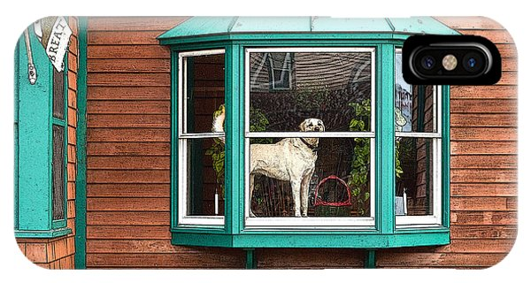 Dog In Window IPhone Case