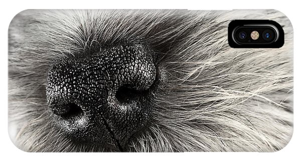 Dog Nose  IPhone Case
