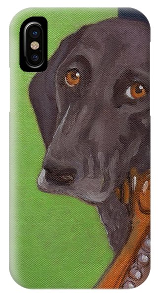 Dog On Chair IPhone Case