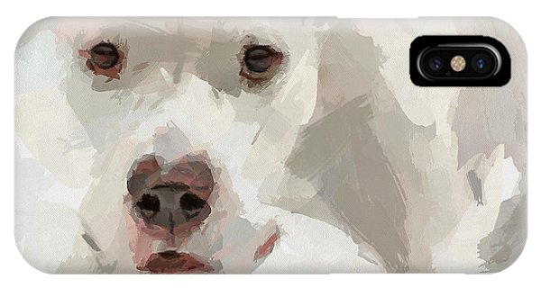 Dog Question IPhone Case
