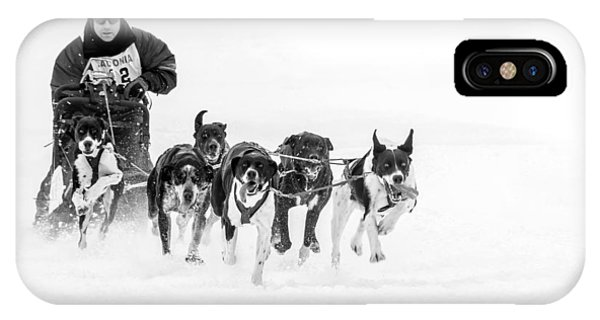 Dog Sled Team IPhone Case