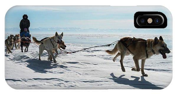 Sled Dog iPhone Case - Dog Sledding by Louise Murray