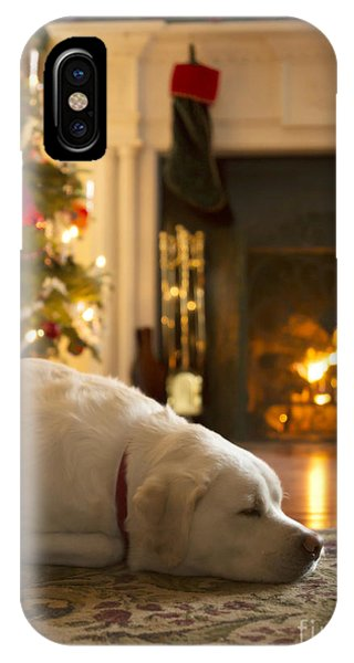 Yellow Lab iPhone Case - Dog Sleeping By The Christmas Tree by Diane Diederich