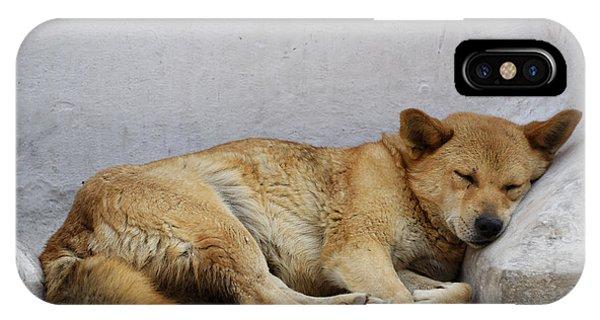 Dog Sleeping IPhone Case