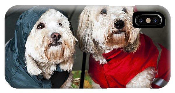 Dogs Under Umbrella IPhone Case