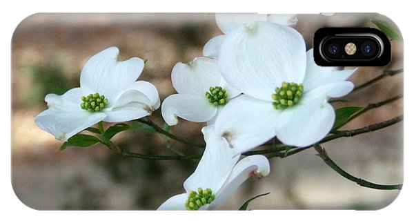 Dogwood 2 IPhone Case