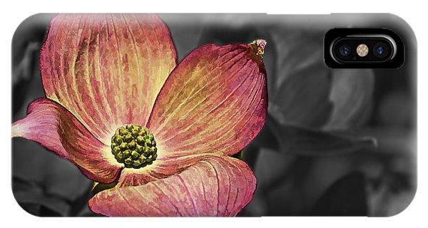 Dogwood Bloom IPhone Case