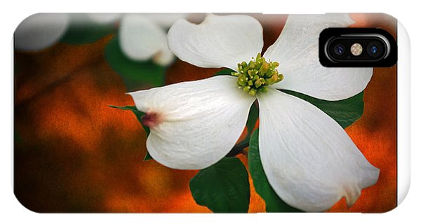 Dogwood Blossom IPhone Case