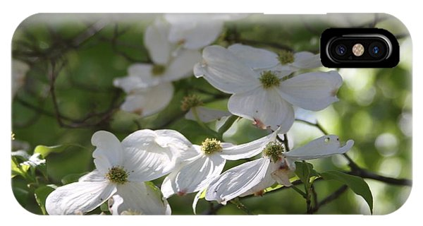 Dogwood Blossoms 3 IPhone Case