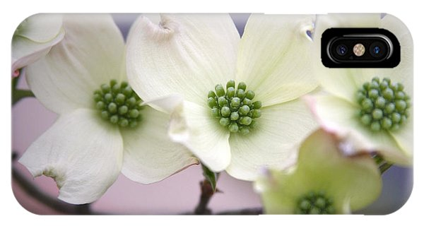 Dogwood Phone Case by CarolLMiller Photography