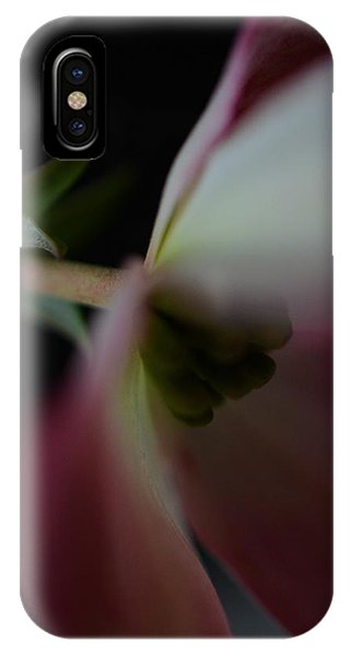Dogwood Flower IPhone Case