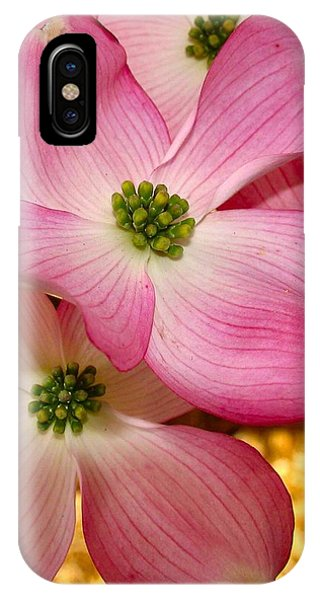 Dogwood In Pink IPhone Case