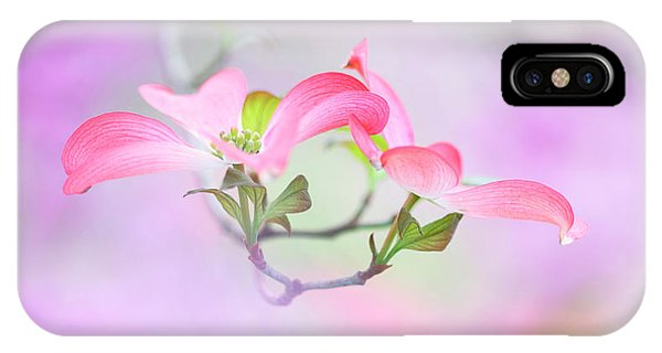 Petals iPhone Case - Dogwood by Purple Bamboo