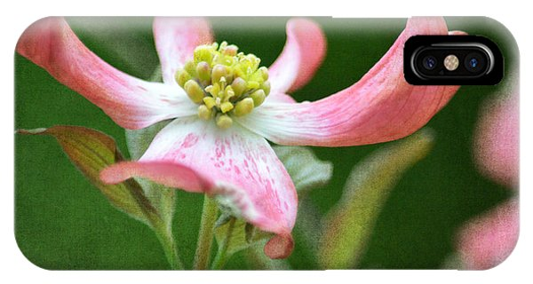 Dogwood Season Number Five IPhone Case