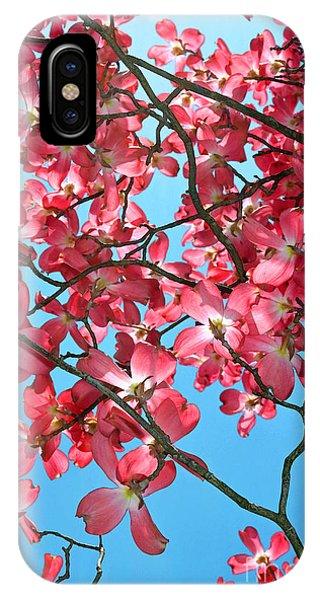 Dogwood Tree Flowers And Blue Sky IPhone Case