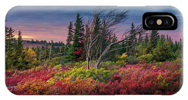 Dolly Sods Windswept Sunset IPhone Case