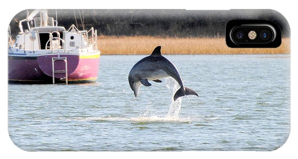 Dolphin Jumping In Taylors Creek IPhone Case
