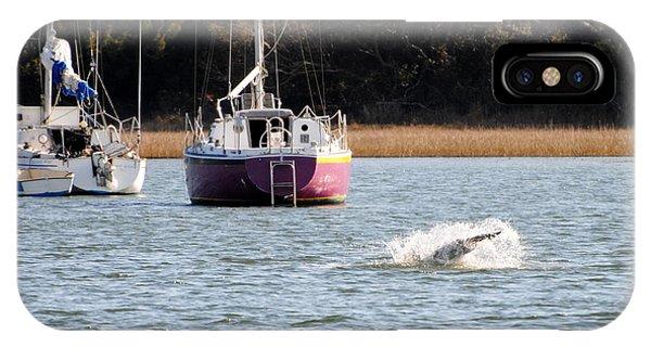 Dolphin Splash IPhone Case