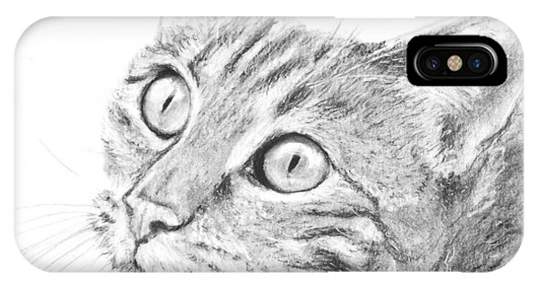 Domestic Cat Portrait IPhone Case