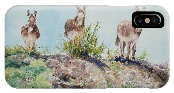 Donkeys IPhone Case