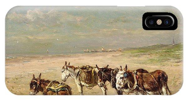 Donkeys On The Beach IPhone Case