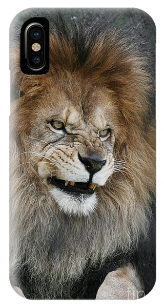 Don't Mess With Me IPhone Case