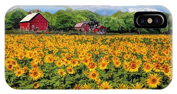 Door County Field Of Sunflowers Panorama IPhone Case