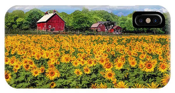 Door County Field Of Sunflowers Panorama IPhone Case