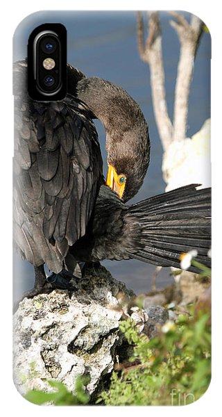 Cormorant Preens IPhone Case