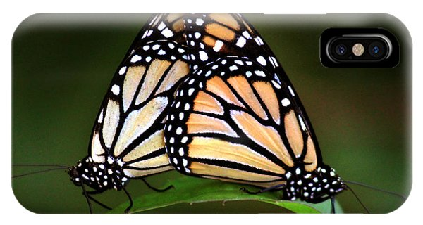 Double Monarch IPhone Case
