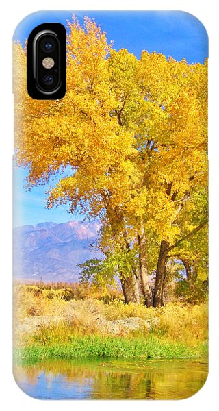 Double Take IPhone Case