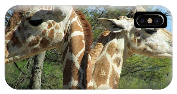 Giraffes With A Twist IPhone Case