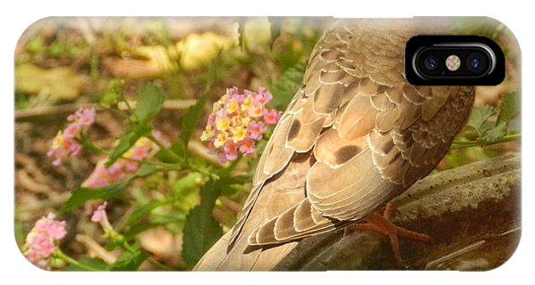 Dove And Lantana IPhone Case
