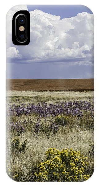 Dove Creek Fall Flowers IPhone Case