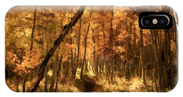 Foliage iPhone Case - Down The Golden Path by Donna Kennedy