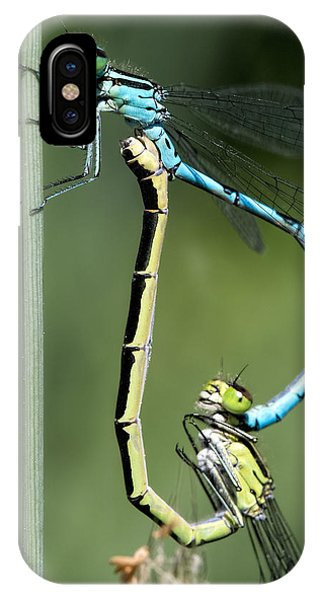 Dragon Fly IPhone Case