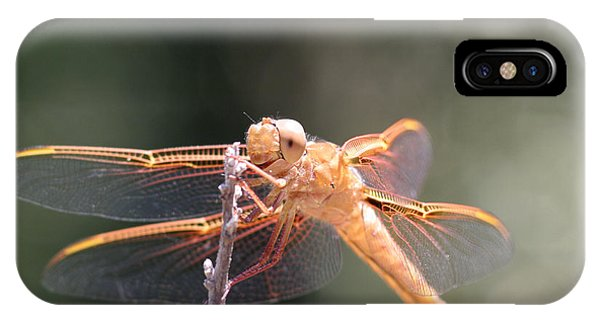 Dragon Fly Phone Case by Laura Paine
