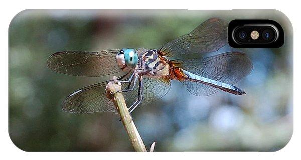Dragonfly Aqua 1 IPhone Case