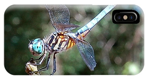 Dragonfly Aqua 2 IPhone Case