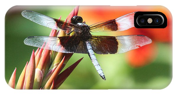 Dragonfly Phone Case by Jill Bell