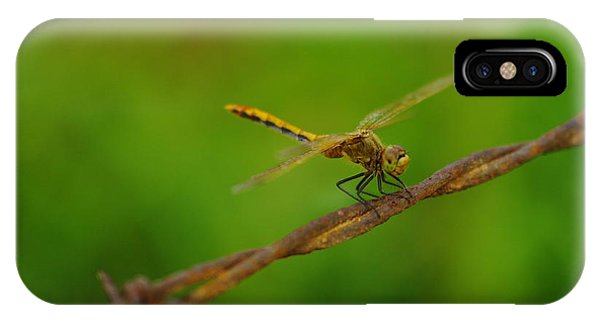 Little Things iPhone Case - Dragonfly On Barbed Wire by Jeff Swan