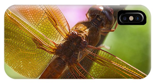 Dragonfly Patterns IPhone Case