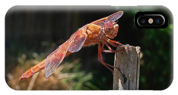 Dragonfly Stretching IPhone Case