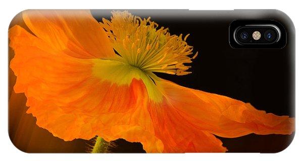 Dramatic Orange Poppy IPhone Case
