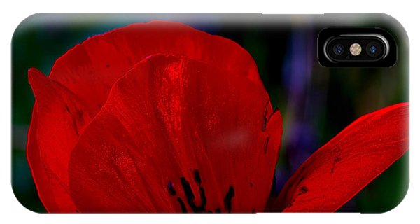 Dramatic Poppie IPhone Case