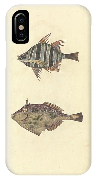 Mottled iPhone Case - Drawing Number 54 by Natural History Museum, London