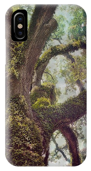 Dreamer's Oak IPhone Case