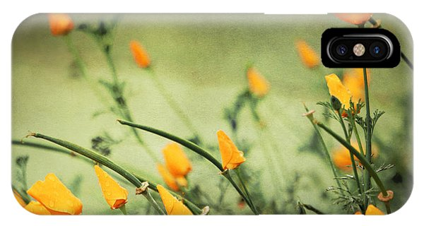 Dreaming Of Spring IPhone Case