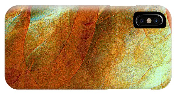Dreamscape Phone Case by JCYoung MacroXscape