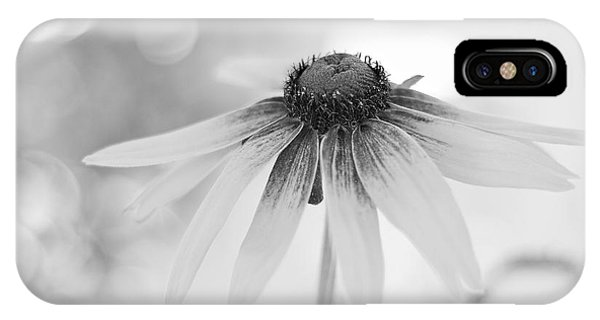Dreamsicle Daisy IPhone Case